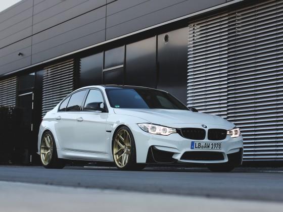 BMW M3 R101 LW Brushed Gold 3.1